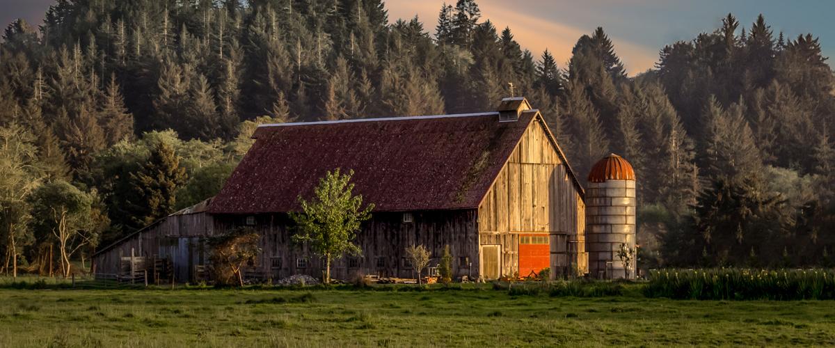 Barn Conversion at Farm
